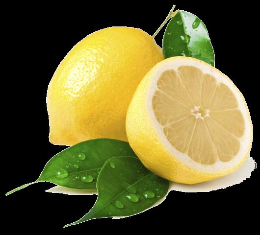 south africa citrus fruit export