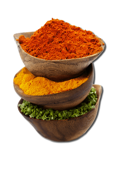 fruitz spices exporters