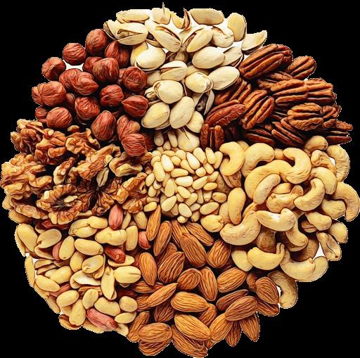 fruitz nut exporters