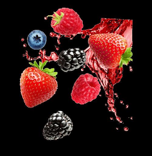 south africa berries export